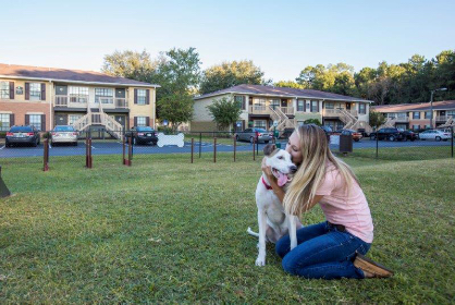 rent with pets uf